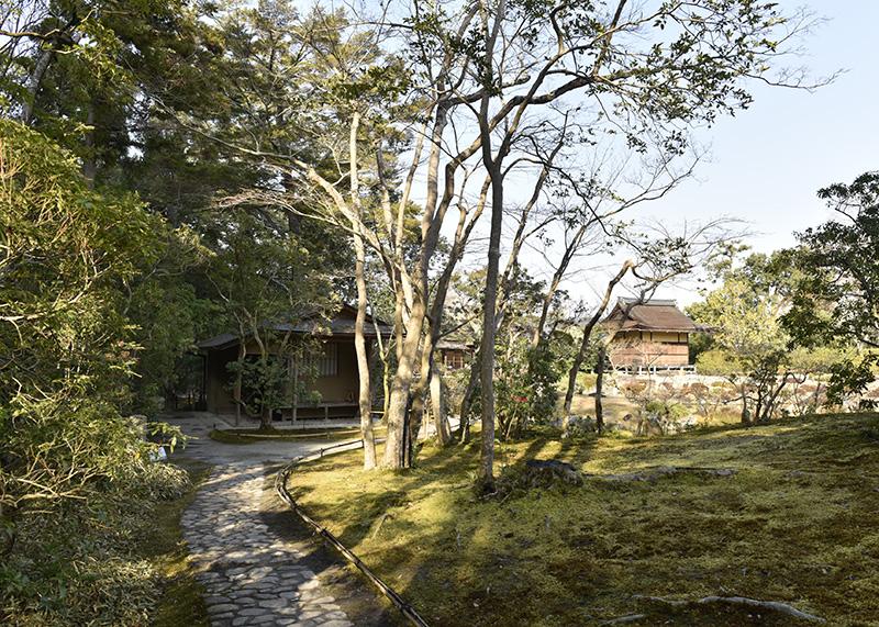 奈良っこ、依水園、奈良市、抹茶。