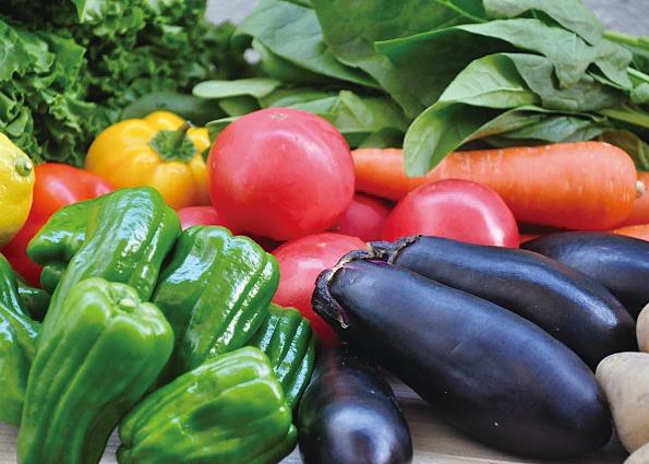 AISAIKAZOKU 愛栽家族 ならやま店。育てておいしい夏野菜! 家族みんなで家庭菜園デビュー