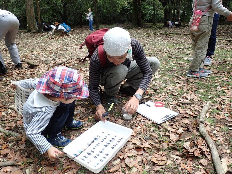 2019年、イベント、奈良県、奈良市、参加型イベント、体験、奈良公園、糞虫観察、5月。
