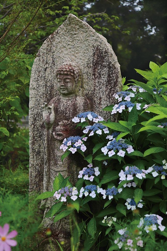 奈良っこ、般若寺、奈良市