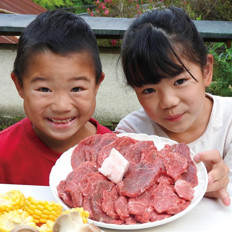 奈良っこ、金井精肉店、大和郡山市、肉、精肉店