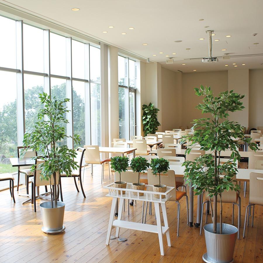 奈良っこNarakkoおすすめ。OHSHIMA 奈良鹿野園 ⁄オオシマ。一般OK!パンを楽しむ短大ランチ。京都城陽市の有名ベーカリー大志万が、奈良佐保短期大学内にレストランをオープン。学生以外の一般人も利用できる。食べ放題のこだわりパンに、サラダとスープ、肉や魚のランチを、素敵な空間で楽しんで。奈良市レストラン。