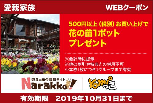 奈良市、園芸、ガーデニング、観葉植物、エアプランツ、コスモス、野菜苗