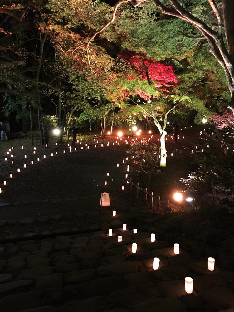 奈良っこ 室生寺