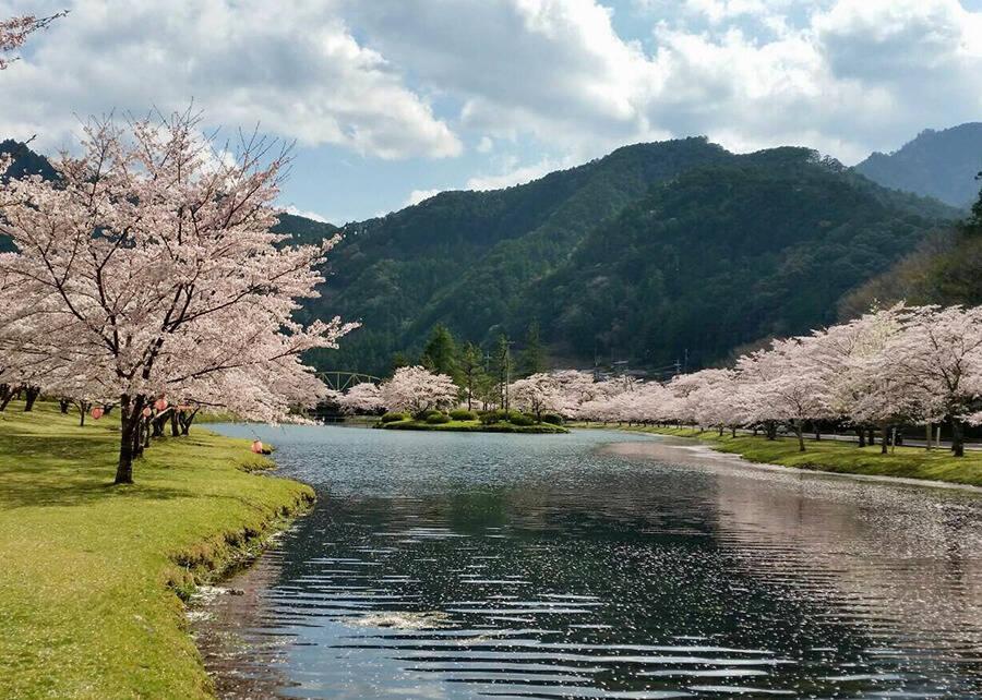21-04shimokitayama1